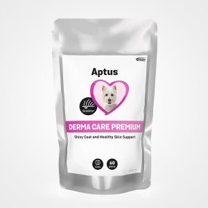 Aptus Derma Care Premium Healthy Skin Support Chews