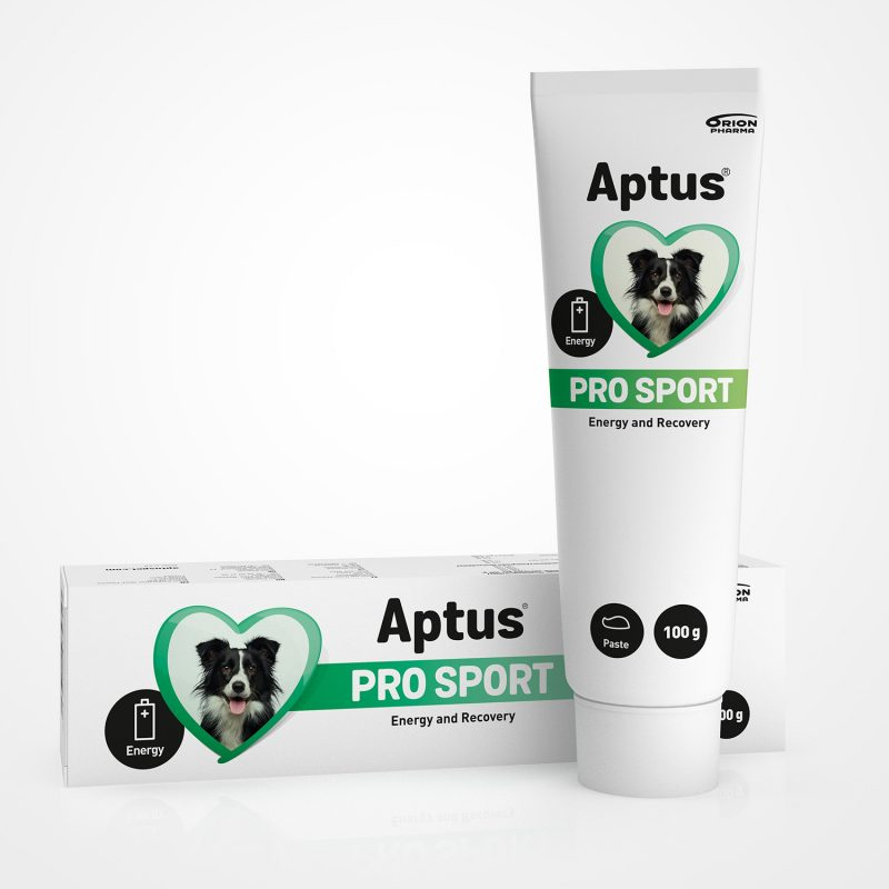 Aptus Pro Sport - Energy and Recovery Supporting Paste