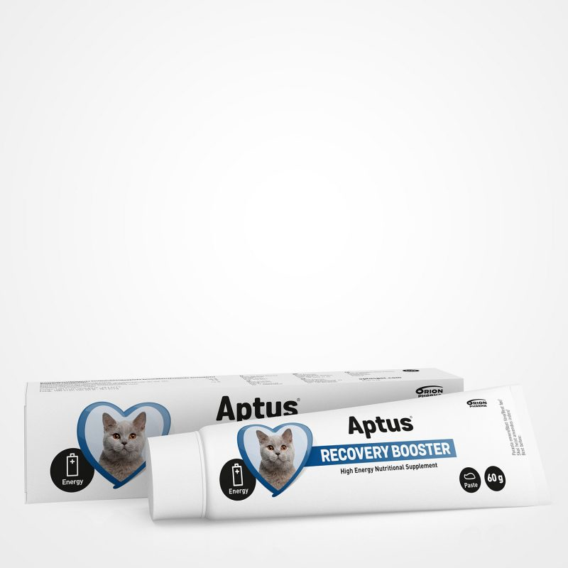 Aptus Recovery Booster for Cats - Nutritional Supplement