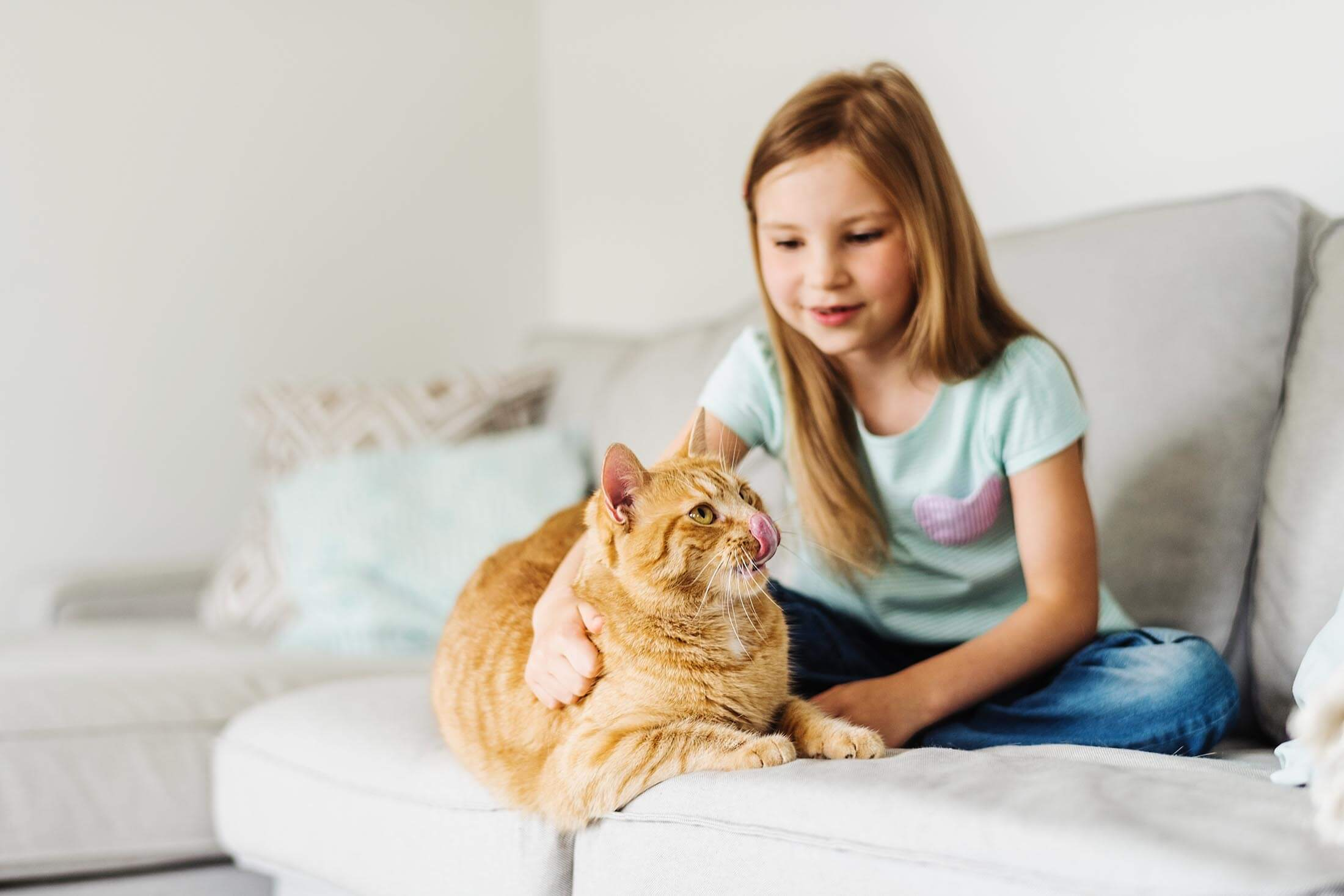 Little girl pet orange cat on the couch