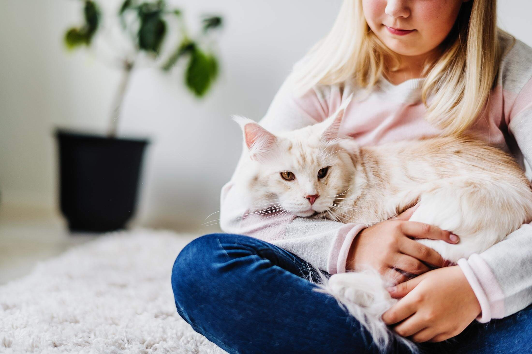 Pet's Stomach Health - Girl with a cat